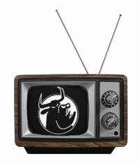 Image for TerrorBull Games on TV tonight